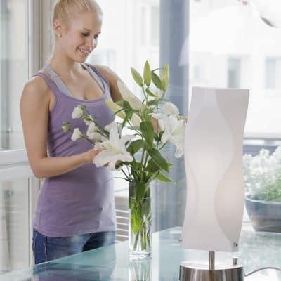 Lampe de luminothérapie Innolux Aurora 2x36w DIM Innosol g1